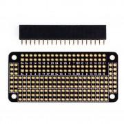 Pi Zero Proto Board with 2 x 20 conn