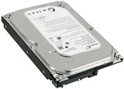 Seagate Barracuda 250GB Internal Hard Disk Drive HDD 3.5 in 7200RPM SATA (ST3250318AS 9SL131)
